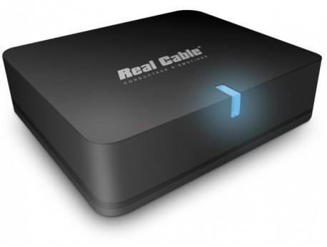 Real cable - iplug btr