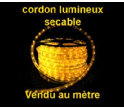 Cordon lumineux 13mm 230V
