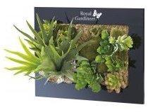 Tableau végétal avec plantes
