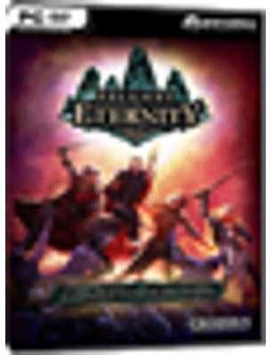 Pillars of Eternity - Champion