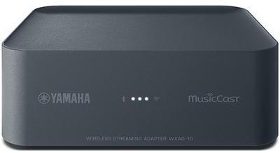 Yamaha WXAD-10 DGY