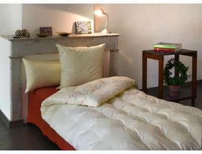 entretien des plumes guide des produits. Black Bedroom Furniture Sets. Home Design Ideas