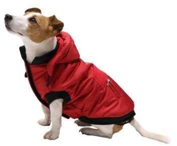 Manteau d hiver pour chien