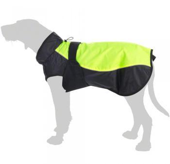 Manteau Illume Nite Neon pour