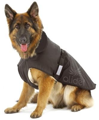 Manteau pour chien 2 en 1