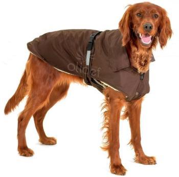 Manteau pour chien NO LIMIT