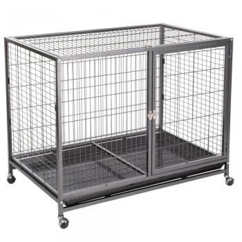 Tabby L Cage d intérieur pour
