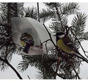 Maisonnettes design pour oiseaux