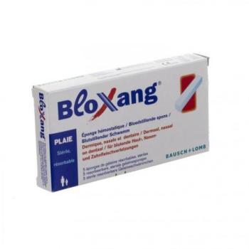 BLOXANG EPONGE 4 0 X 1 0 X