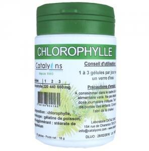 Catalyons Chlorophylle Magnésienne