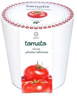 Tomates à faire pousser en