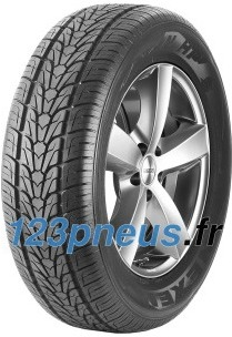 Pneu Nexen Roadian HP ( 305