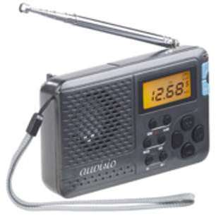 Mini récepteur radio mondial