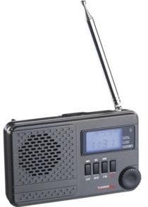 Récepteur radio mondial WWR-100