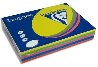 Papier couleur Trophée coloris