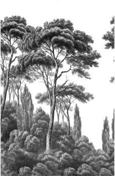 Ananbô - Papier peint Pins