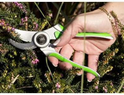 Scateur Donna7 7 180mm verts