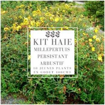 Kit Haie Basse Millepertuis