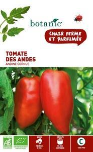 Tomate des Andes - Andine