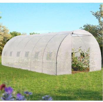 Grande serre de jardin transparente