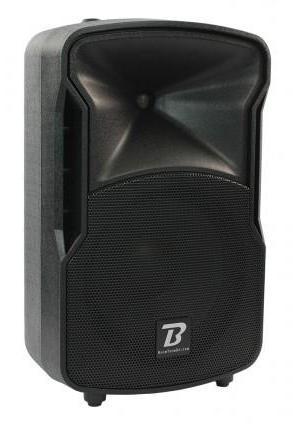 Enceinte Amplifiee Pro10-Dsp