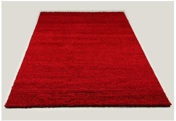 Tapis shaggy rouge de salon