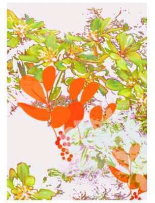 Tenture decorative feuilles