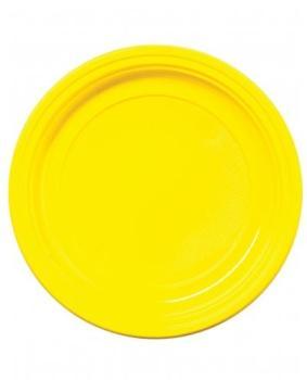 30 Assiettes en plastique
