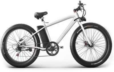 Vélo électrique Revoe Fat