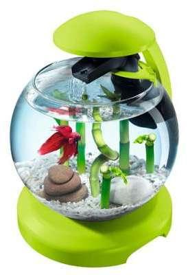 Catgorie aquariums du guide et comparateur d 39 achat for Achat aquarium rond