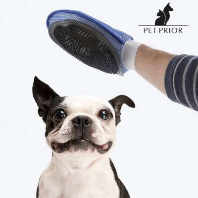 virbac effipro spray chien chat spray de 500 ml. Black Bedroom Furniture Sets. Home Design Ideas