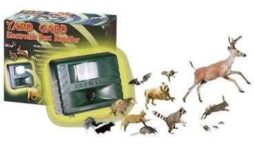 Recherche repousse chat - Repulsif chauve souris ...