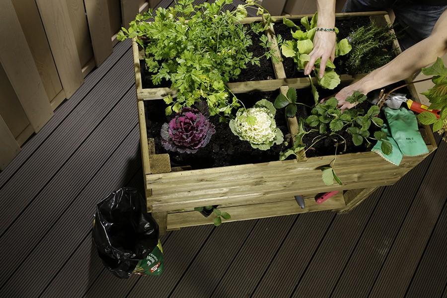 Catgorie jardinire page 3 du guide et comparateur d 39 achat for Jardin potager bois