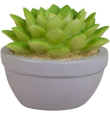 Vidaxl c porte plante roulettes en m tal 6 pcs for Plante lumineuse