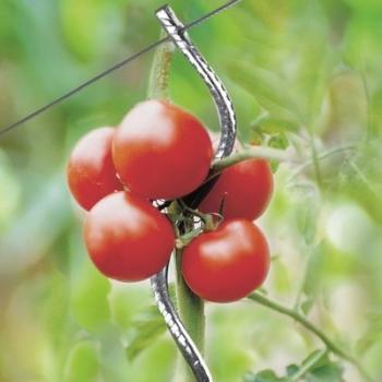 Catgorie protection de culture marque ose page 1 du guide et comparateur d 39 achat - Tuteur tomate spirale leclerc ...